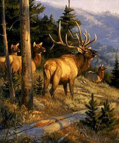 Emanuel Luetze Wildlife Paintings, Wildlife Art, Animal Paintings, Deer Paintings, Elk Images, Elk Pictures, American Animals, Deer Art, Hunting Dogs