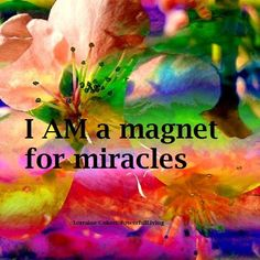 """Today's mantra """" I AM a magnet for miracles"""".   You are a vibrational being. What you believe, think, feel & say inside your head and to others will be what you attract. Life reflects back what your """"inner world """" is communicating energetically.  Begin today with the intention of magnetizing miracles."""