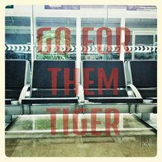 Go for them tiger #quote