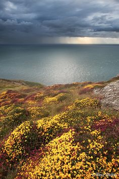 Aberdaron Hinterland, North-west Wales by Steve Mackay What A Wonderful World, Beautiful World, Beautiful Places, Beautiful Sky, The Places Youll Go, Places To See, Landscape Photography, Nature Photography, Champs