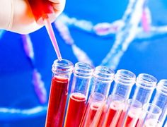 6 reagentes úteis para a marcação de proteínas