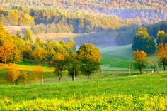 www.orseg-szallas.hu:Őrségi tájkép Heart Of Europe, How Beautiful, Hungary, Budapest, Countryside, Vineyard, Golf Courses, River, Landscape