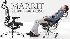 MarritDirectorMesh1