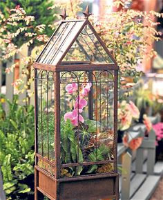 in glass: Tovah Martin's terrariums Wardian Case was spotted in the daily telegraph! Wardian Case was spotted in the daily telegraph! Orchid Terrarium, Terrarium Plants, Glass Terrarium, Terrarium Centerpiece, Homemade Greenhouse, Best Greenhouse, Greenhouse Ideas, Pallet Greenhouse, Window Greenhouse
