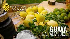 Guava & alfalfa juice Recipe