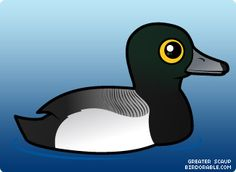 Cute Greater Scaup < Ducks & Geese < Birdorable - t-shirts & gifts with cute cartoon birds