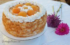 apricot sponge cake recipe
