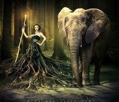 beauty, elephant, forest, girl, power