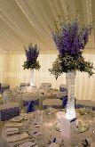 WEDDING COLLECTION DESIGNED FOR SEPTEMBER BRIDES 2013
