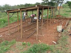 Maasai cleared the land and brought stones for what will be a chicken coop in Bisil, Kenya