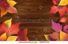 2018 Autumn wooden background with maple leaves and water drops. Fall orange, yellow, red leaves. Vector illustration