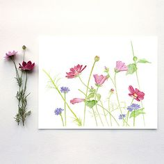 """This is a beautiful signed archival print called """"Wildflowers"""" based on one of my original botanical watercolor paintings. To say that I love flowers is a bit of an understatement. I love looking at t"""