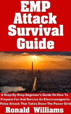 EMP Attack Survival Guide: A Step-By-Step Beginner's Guide On How To Prepare For And Survive An Electromagnetic Pulse Attack That Takes Down The Power Grid, http://www.amazon.com/gp/product/B071HNZ4VZ/ref=cm_sw_r_pi_eb_gdhfzbAW8AKKC