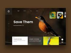 Free Design Materials – 35 Stunning Landing Page Designs for Your Inspiration Site Design, Ux Design, Creative Web Design, Template Site, Landing Page Design, Web Design Inspiration, Ui Ux, Bird, Html Css