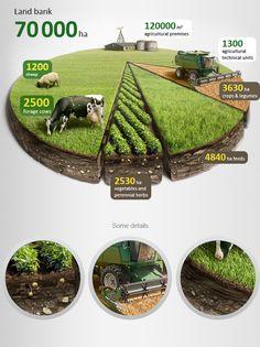 Clear agriculture info-grphic