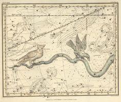 Astronomy-Celestial-Atlas-Jamieson-1822-Plate-27.jpeg (2750×2323)