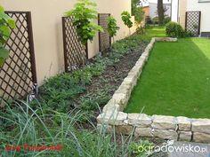 Murki oporowe - strona 2 - Forum ogrodnicze - Ogrodowisko