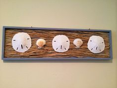 Sand Dollar and Shell wall hanging with raffia by SeaToLandDesigns, $21.50