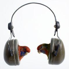 bird headphone
