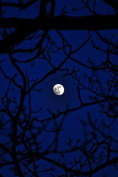 Pleine Lune -