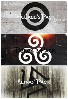 Which pack would you join? Alpha's pack! Scott is an idiot. And let's all be honest, yes Derek's hot, but he falls a bit short in leadership.