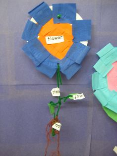 Paper plate flower craft for Kindergarten.
