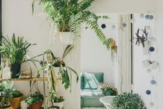 Private and public all at once, interior designer Andrew Trotter's Barcelona home opens as an exhibition space and concert venue. Our favorite part? The plants, of course. Indoor Garden, Indoor Plants, Home And Garden, Pot Plants, Image Deco, Barcelona, Bohemian House, Green Life, Hanging Plants