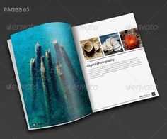Alpine Travel Brochure Template  Print  Creative And Template