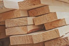 Home - Kayu Bekisting Wood, Places, Woodwind Instrument, Trees, Home Decor Trees, Lugares, Woods
