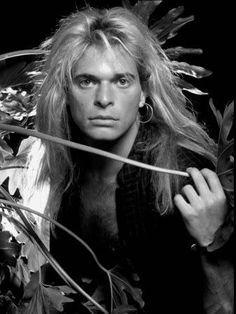 David Lee Roth he was hot as hell back then 80s Music, Music Love, David Lee Roth, Eddie Van Halen, Sunset Strip, Cyndi Lauper, Glam Rock, Back In The Day, Getting Old