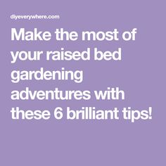 Make the most of your raised bed gardening adventures with these 6 brilliant tips!
