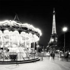 Carousel paperdove