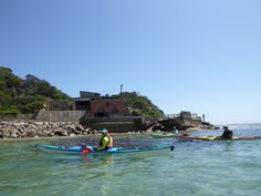 Kayak Shop Australia, the sea kayaking specialists in Melbourne. Offering sea kayak products, hire, rentals, courses and training. East Coast, How To Introduce Yourself, Kayaking, Melbourne, Coastal, Journey, Australia, Island, Explore