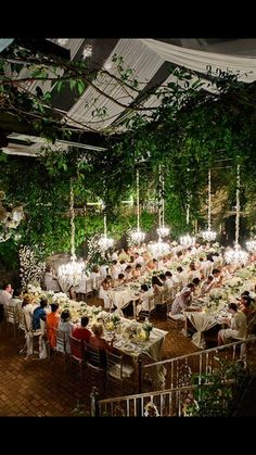 The intimate atmosphere. Cosy, green and romantic!