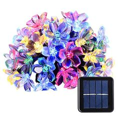 Qedertek Solar Christmas String Lights 50 LED Fairy Blossom Flower Garden Lights for Outdoor Home Lawn Wedding Patio Party and Holiday Decorations 1 Pack MultiColor ** You can find more details by visiting the image link. (This is an affiliate link) Flower Fairy Lights, Solar Fairy Lights, Solar Led String Lights, String Lights Outdoor, Outdoor Lighting, Decoration Christmas, Party Decoration, Holiday Decorations, Wedding Decorations