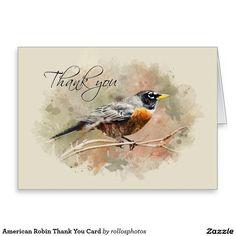 American Robin Thank You Card