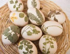 Egg decorating galore
