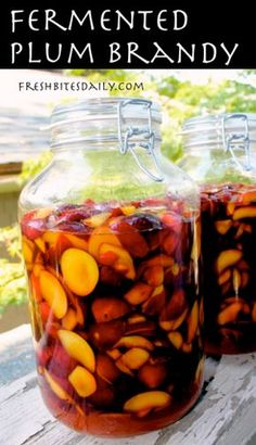 Fermented Plum Brandy Recipe -- Fermented foods taste amazing and are fabulous for your health! Try these great ideas to get your inspired! A great new years resolution! Homemade Wine Recipes, Homemade Alcohol, Plum Recipes, Homemade Liquor, Canning Recipes, Fermentation Recipes, Alcohol Recipes, Fireball Recipes, Mead