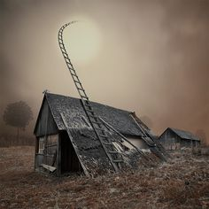 Photographies Surréalistes de Caras Ionut  (find le chat)