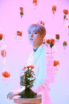 Listen to every Astro track @ Iomoio K Pop, Jiyong, Kim Myungjun, Los Astros, Park Jin Woo, Astro Wallpaper, Lee Dong Min, Astro Boy, Minhyuk