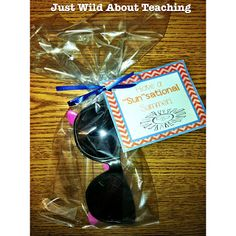 Just Wild About Teaching: Have a Sunsational Summer! - Tag Freebie!