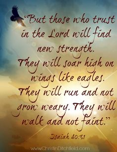 """But those who trust in the Lord will find new strength. They will soar high on wings like eagles..."" Isaiah 40:31"