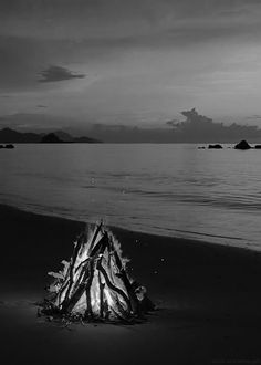 """black-and-white-gifs: """"Palawan, Philippines (Relaxing Nature HD Videos) """""""