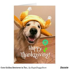165 best golden retriever greeting cards postcards images on cute golden retriever in turkey hat thanksgiving card by augiedoggystore m4hsunfo