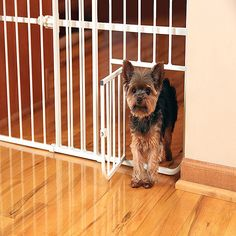 Carlson Pet Products Extra Tall Tuffy Pet Gate, Metal I would use it to keep my dwarf rabbit contained and be able to let the cats in and out.