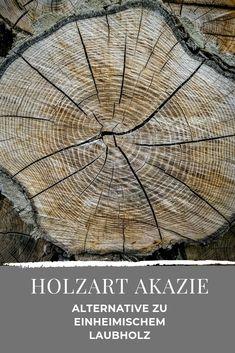"""Erfahre, was die Holzart so besonders macht und was die """"Robinie"""", die falsche Akazie ist. Types Of Wood, Pictures"""