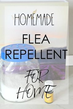 HOMEMADE FLEA REPELLENT FOR HOME - Get rid of those nasty fleas the healthy, natural way! Make an easy homemade flea repellent for your home with a few simple, inexpensive ingredients you most likely have on hand. Homemade Flea Killer, Homemade Flea Spray, Homemade Dog, Deep Cleaning Tips, Cleaning Solutions, Cleaning Hacks, Teeth Cleaning, Flea Spray For House, Flea Spray For Furniture