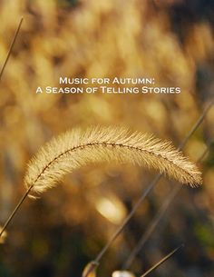 Music for Autumn: A Season of Telling Stories