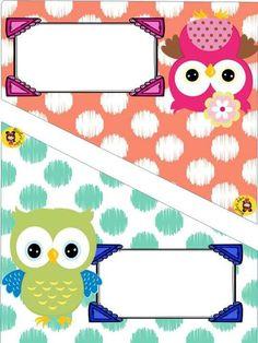 Cuadernos Owl Theme Classroom, Classroom Decor Themes, Classroom Organization, Classroom Teacher, Kindergarten Classroom, Classroom Ideas, New School Year, First Day Of School, School Labels