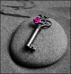 Splash of color key with miniature rose ↞ ❁✦⊱❊⊰✦❁ ڿڰۣ❁ ℓα-ℓα-ℓα вσηηє νιє ♡༺✿༻♡·✳︎·❀‿ ❀♥❃ ~*~ FR Jul 2016 ✨вℓυє мσση ✤ॐ ✧⚜✧ ❦♥⭐♢∘❃♦♡❊ ~*~ нανє α ηι¢є ∂αу ❊ღ༺✿༻♡♥♫~*~ ♪ ♥✫❁✦⊱❊⊰✦❁ ஜℓvஜ ↠ Black And White Pictures, Black And White Colour, Pink Grey, Purple, Gray, Hot Pink, Splash Photography, Color Photography, Black And White Photography